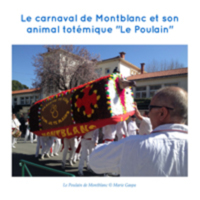 V_poulain_de_montblanc.JPG